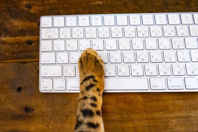かわいらしい猫をモチーフにした名刺の作り方