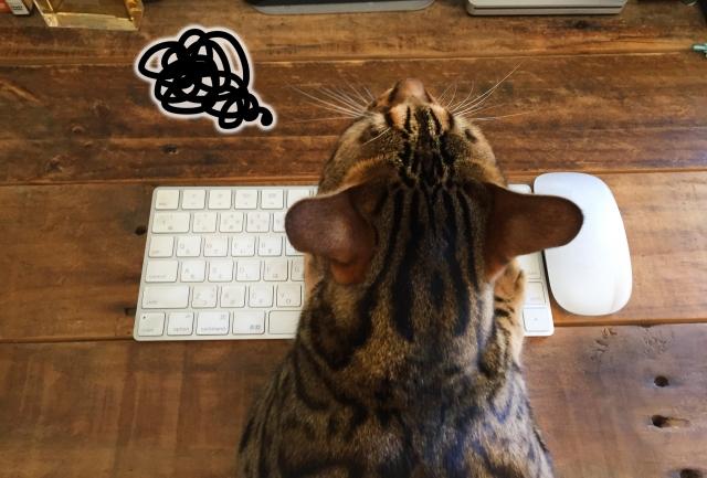 かわいらしい猫をモチーフに名刺を作るには?SNSに見るアイデア実例