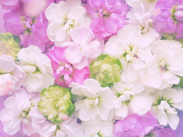 名刺デザインに花柄を活かす方法
